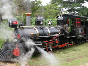 DSCN5421